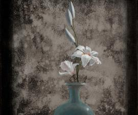 """Lilies"", 2010 - 2019, acrylic on canvas, 16"" x 14"""